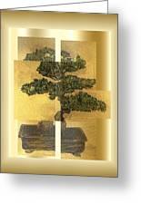 White Pine Bonsai Greeting Card