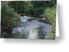 White Plains Stream Greeting Card