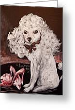 White Poodle  Greeting Card