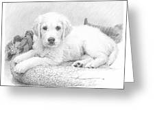 White Puppy Pencil Portrait Greeting Card