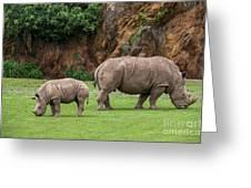 White Rhino 11 Greeting Card