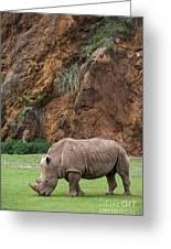 White Rhino 13 Greeting Card