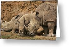 White Rhino 3 Greeting Card
