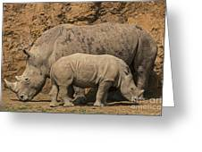 White Rhino 4 Greeting Card