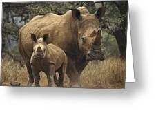 White Rhinoceros And Baby Lewa Kenya Greeting Card