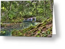White River Falls Greeting Card