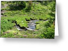 White River Pass Stream Second View Greeting Card