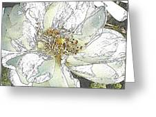 White Rose Abstract Greeting Card