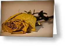 White Rose For Mom Greeting Card