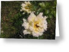 White Rose N My Backyard Greeting Card