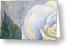 White Rose One Panel One Of Four Greeting Card