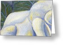 White Rose Two Panel One Of Four Greeting Card