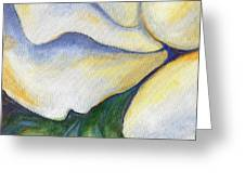 White Rose Two Panel Three Of Four Greeting Card