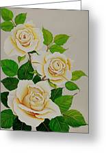 White Roses - Vertical Greeting Card by Carol Sabo
