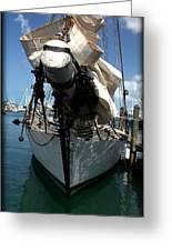 White Sail   Greeting Card