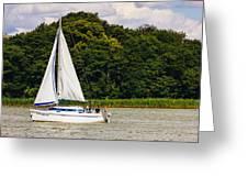 White Sailboat Greeting Card