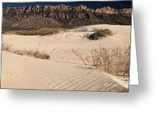 White Sand Below Greeting Card