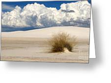 White Sands Cross Greeting Card