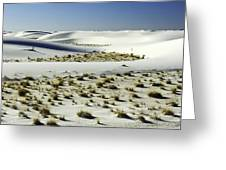 White Sands National Monument-098 Greeting Card