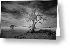 White Sands National Monument 1 Dark Mono Greeting Card