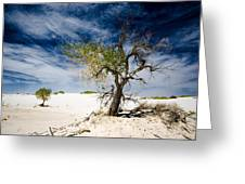 White Sands National Monument #1 Greeting Card