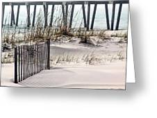 White Sands Of Pensacola Beach Greeting Card