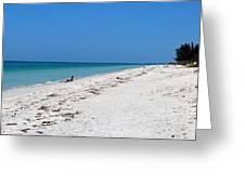 White Sandy Beach Greeting Card