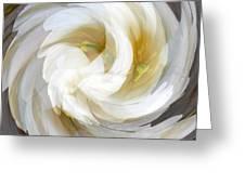 White Satin Swirl Greeting Card