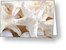 White Starfish 2 Greeting Card