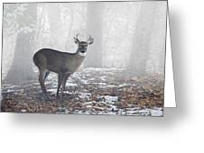 White Tailed Deer Buck In The Mist Greeting Card