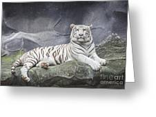 White Tiger On A Rock  Greeting Card