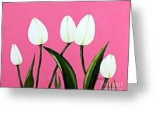 White Tulips On Pink Greeting Card