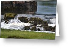 White Water Beauty Greeting Card
