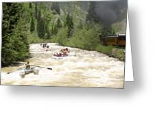 Animas River White Water Rafting The  Greeting Card