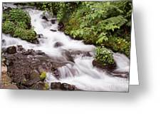 White Water Greeting Card