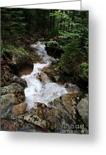 White Waters Over Granite Bolder Greeting Card