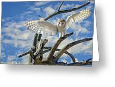 White Wide Wings Greeting Card