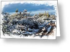 White Winter In The Desert Of Tucson Arizona Greeting Card