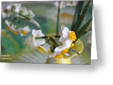 Whiteness In The Vase Greeting Card