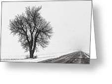 Whiteout Greeting Card