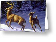 Whitetail Deer Painting - Startled Greeting Card