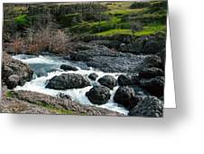 Whitewater At Bear Hole Greeting Card