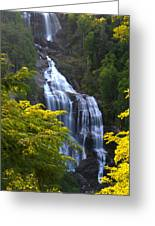 Whitewater Falls Greeting Card