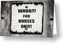 Whoa For Horses Only Sign In Black And White Greeting Card