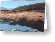 Wicklow Bogscape Greeting Card