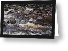 Wicklow River # 1 Greeting Card
