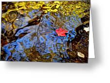 Wiggling Water Greeting Card