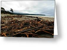 Wild Beach New Zealand Greeting Card