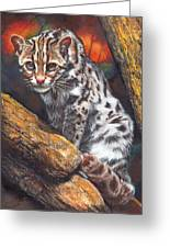 Wild Cat Greeting Card