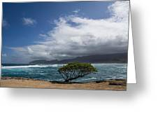 Wild Coast - Laie Point - North Shore - Hawaii Greeting Card